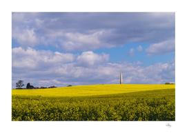 Bilsington Obelisk, Kent