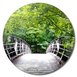The Footbridge - From the Nature As Abstract Series