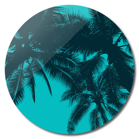 Palms in summer, blue