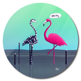 Nice Try, Flamingo!