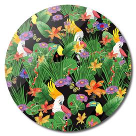 Tropical Bird Paradise