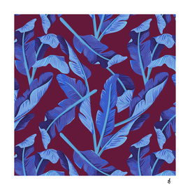 Tropical '17 - Blue Bird Of Paradise