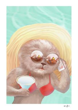 Sunglass Cat