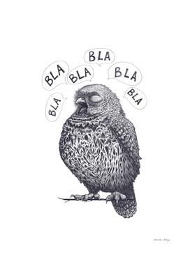 Owl bla bla bla