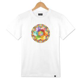 Hexagonal Rainbows