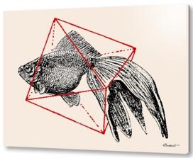 Fish in Geometrics III