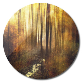 vintage woods