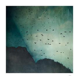 eXodus - a sky full of birds