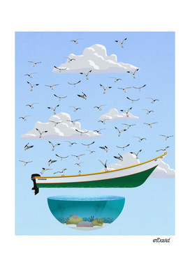 boat and birds