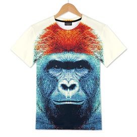 Gorilla - Colorful Animals
