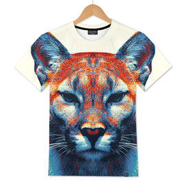 Puma - Colorful Animals