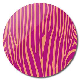 Funky zebra v1