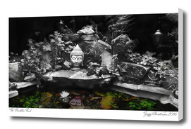 Buddha Pond 2016 (Mono Spectrum Edition)