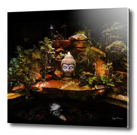 Buddha Pond Calm Reflection (Square Composition)