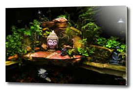 Buddha Pond 2016 (Large Edition)