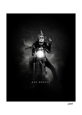 Bad-Monkey