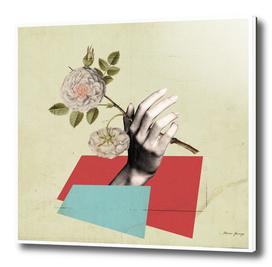 female hand & flower