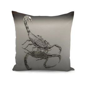 Mexican Scorpion Chrome on Glass