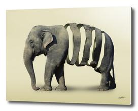 Ribbon Elephant