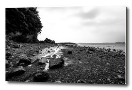Daebudo Island