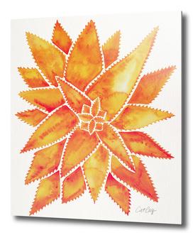 Orange-AloeVera-artprint