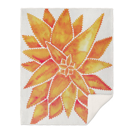 Orange-AloeVera-artprint