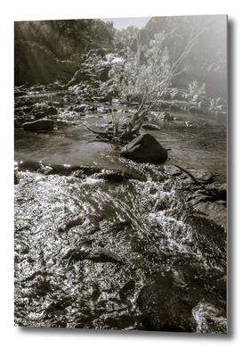 Sun rays at Edith Falls in black and white, Australia.