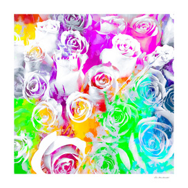 rose texture abstract  with colorful painting abstract