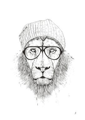 Cool lion (bw)