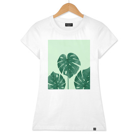 monstera the nature series