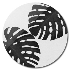 Monstera Leaf II BW