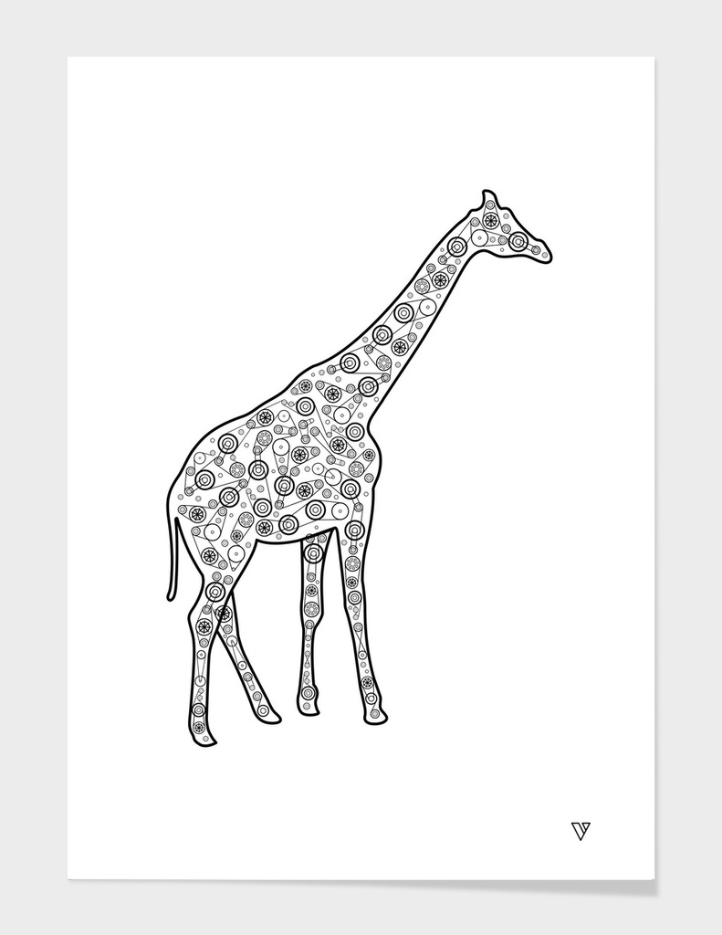 The secret of the giraffes