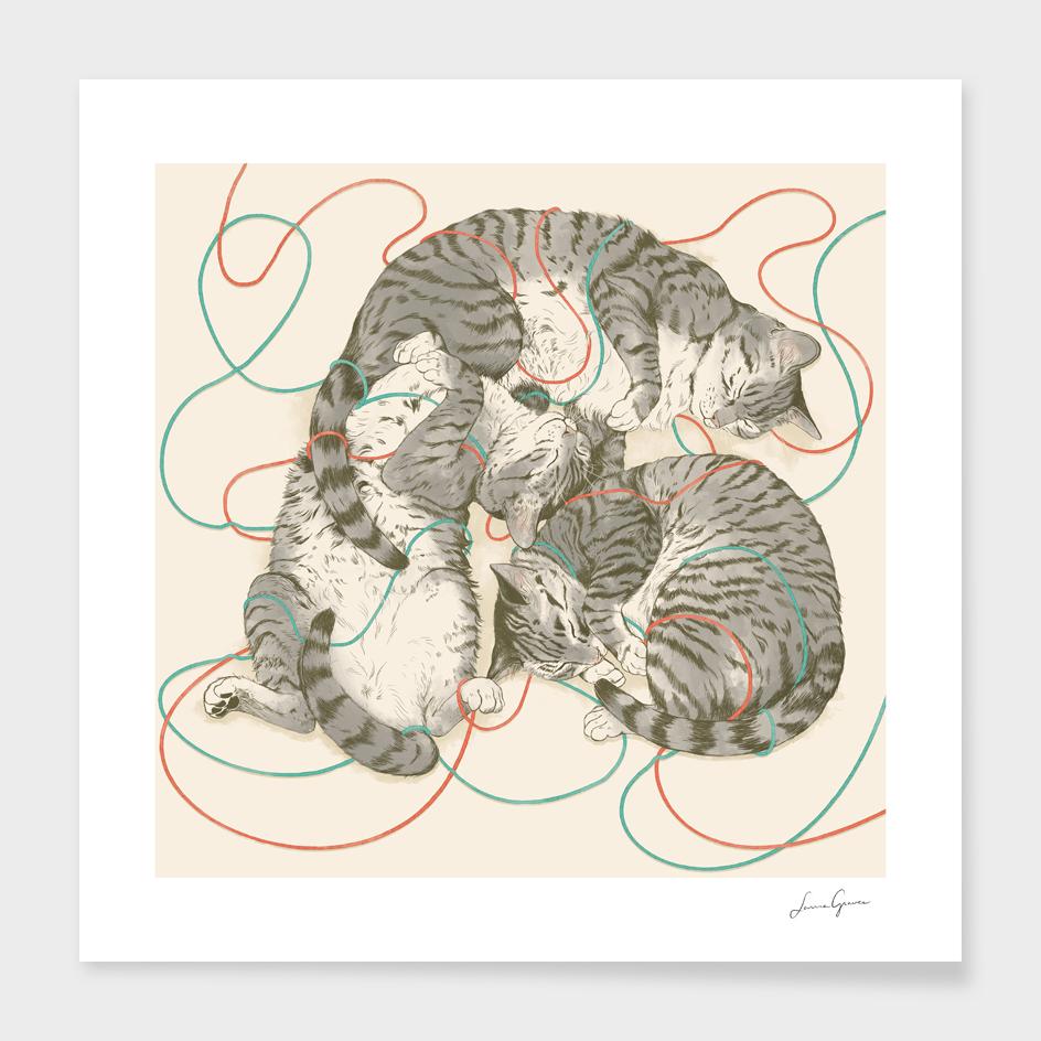 cats main illustration