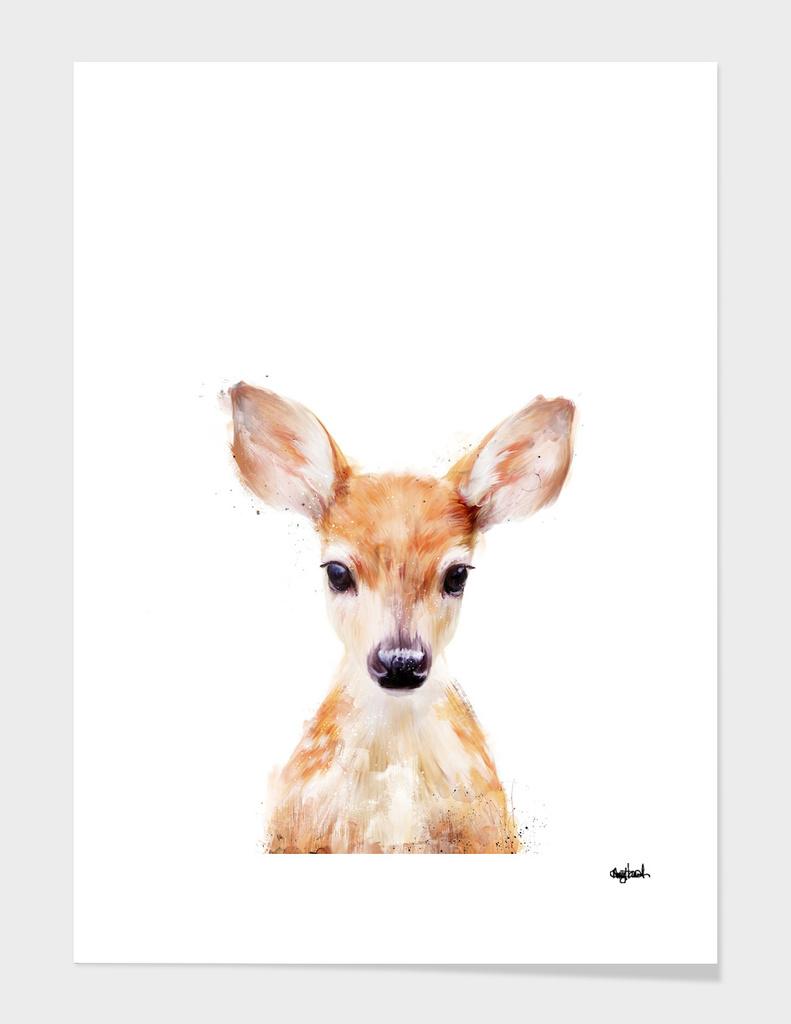 Little Deer main illustration