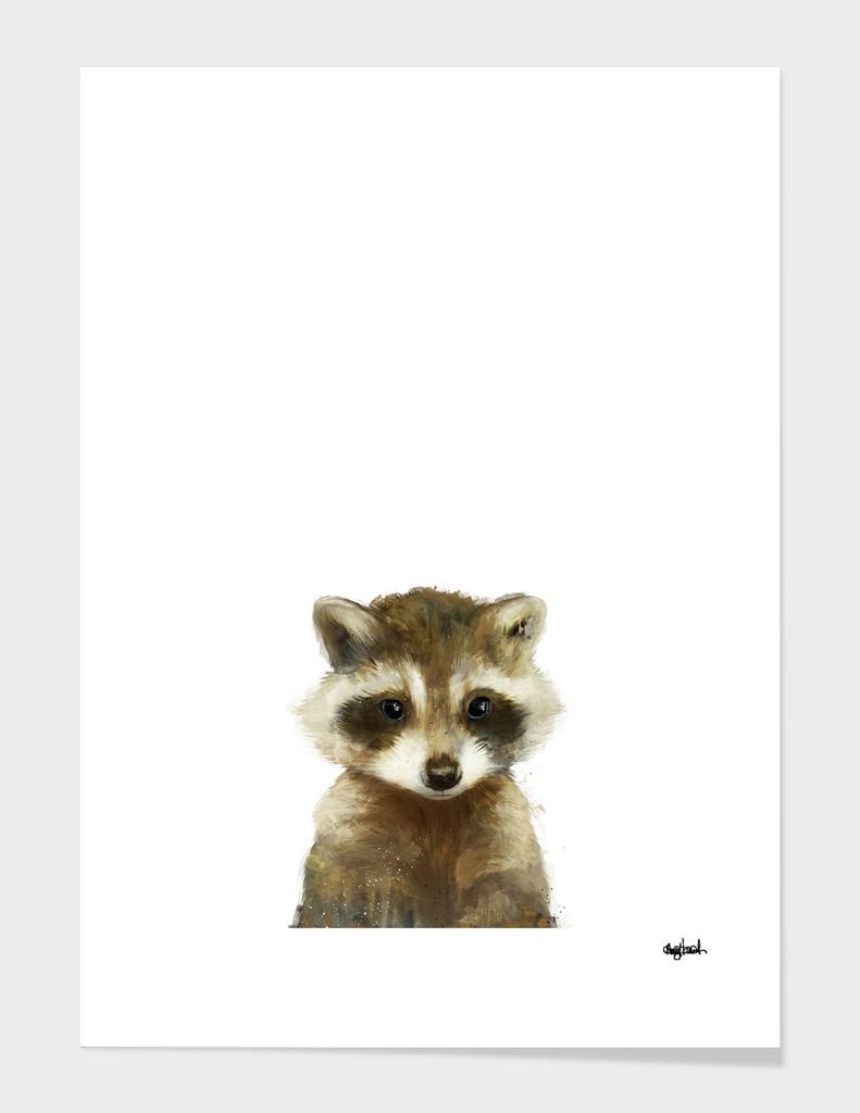 Little Raccoon main illustration