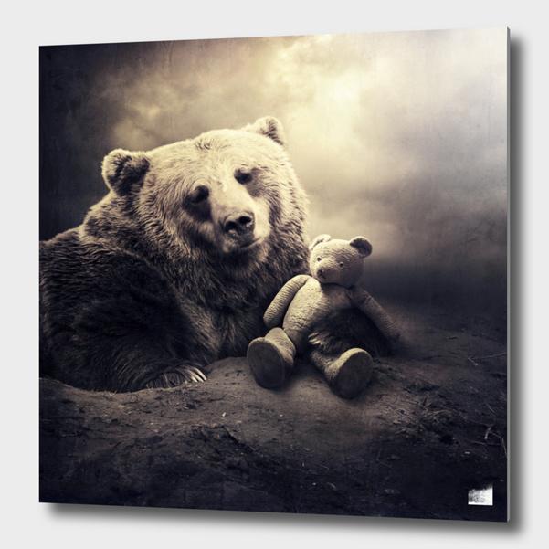 Teddy main illustration