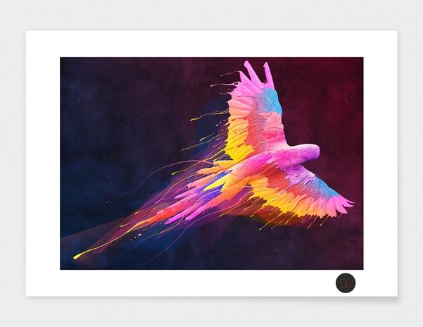 Flying Colors main illustration