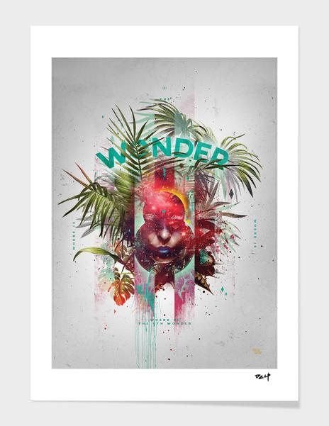 Wonder 8 main illustration