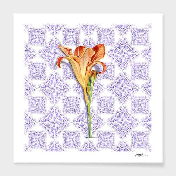 Daylily & Lace main illustration