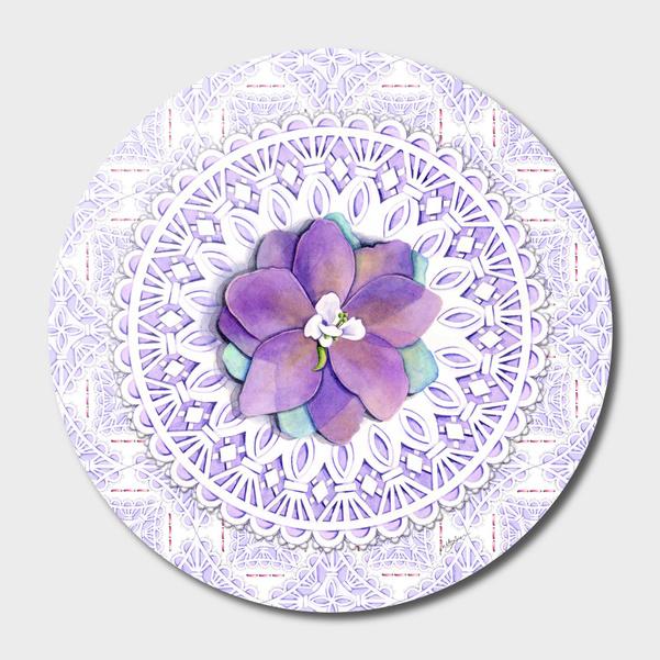 Delphinium Lace main illustration