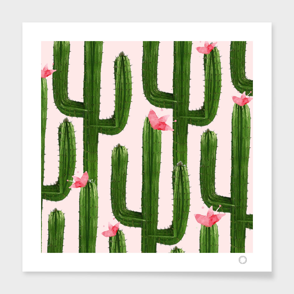 Happy Cacti main illustration