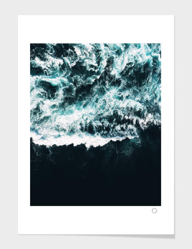 Oceanholic main illustration
