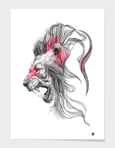 Lion v.01 main illustration