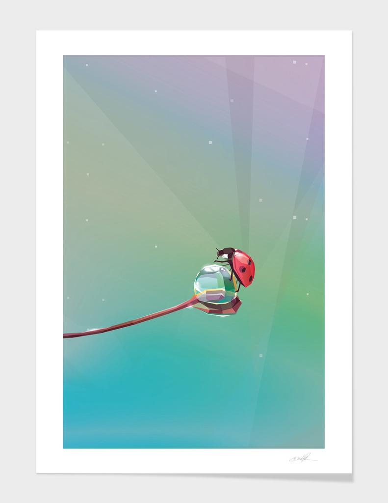Morning dew and Ladybug main illustration