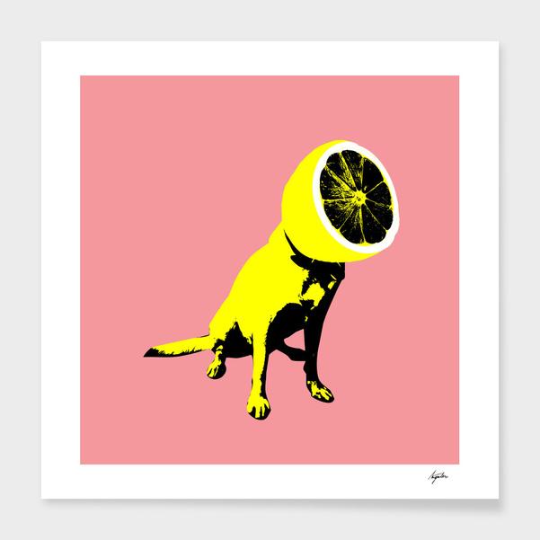 Lemon main illustration