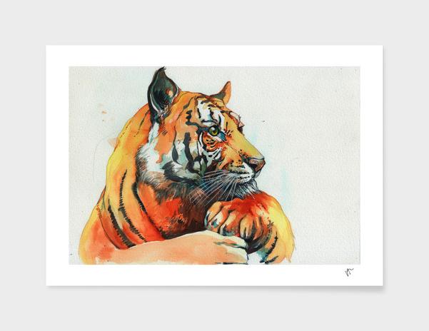 TIGER-THE-HUNTER main illustration