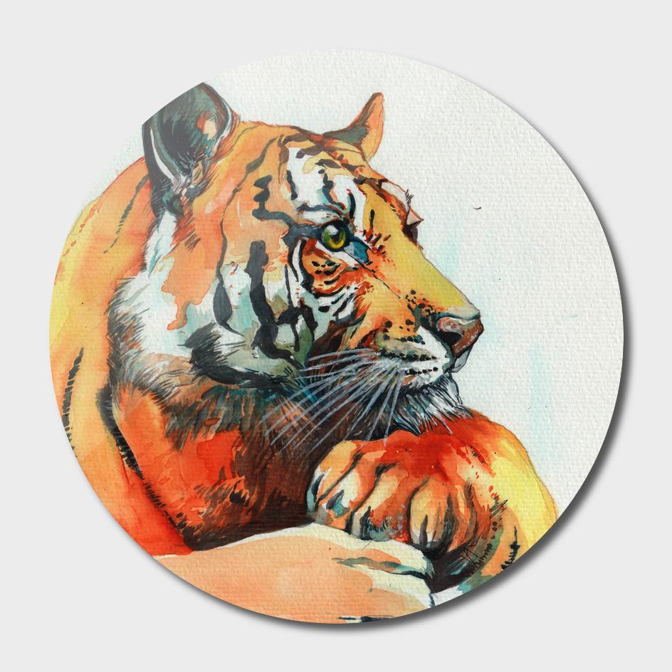 TIGER-THE-HUNTER