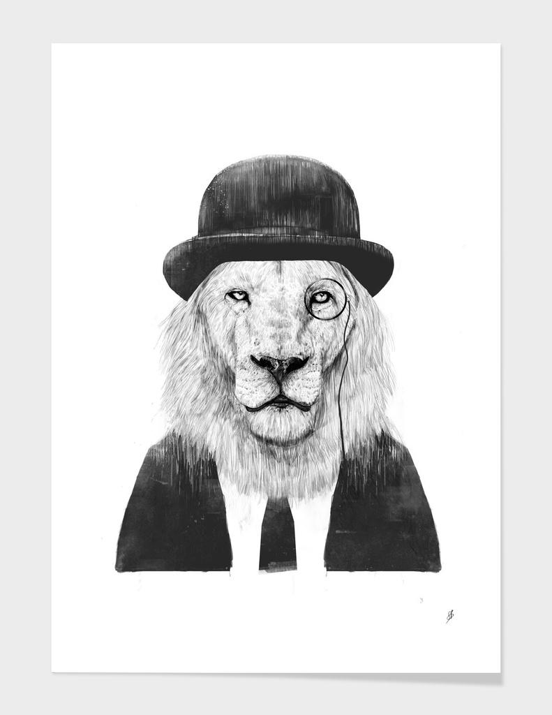 Sir Lion main illustration