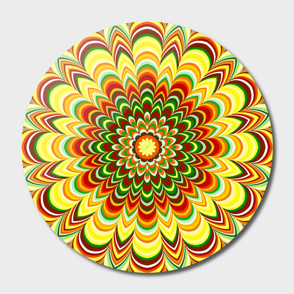 Colorful flower striped mandala main illustration