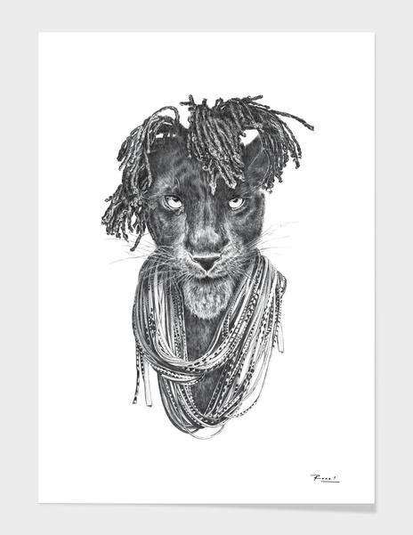 Pantherasta main illustration